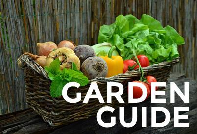 garden guide copy
